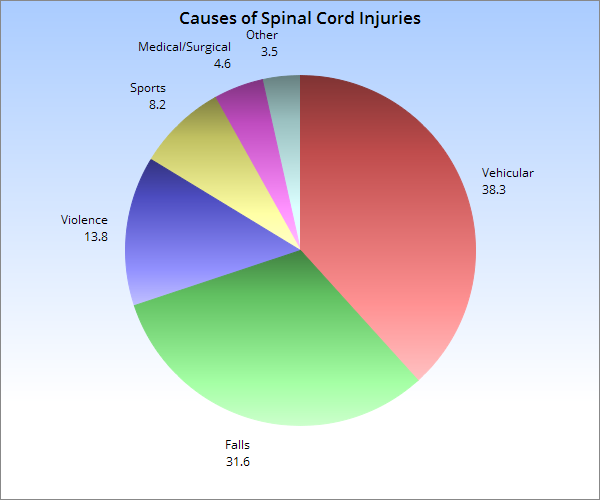 Spinal Cord Injury Info